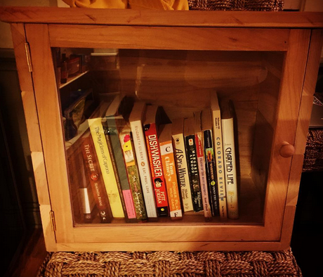 photo of my little free library, with several books inside